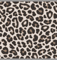 brown leopard or jaguar seamless pattern modern vector image