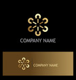 circle group connect gold logo vector image