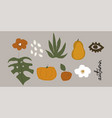 cute harvest autumn clip art elements and text vector image