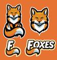 fox mascot character set vector image vector image