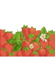 fresh tasty strawberries vector image