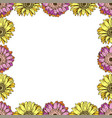 seamless pattern with daisies flower on white vector image vector image