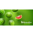 watermelon sweet fruits vector image vector image