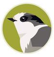 wild birds canada gray jay round vector image vector image