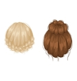 woman hairstyle back view vector image vector image
