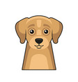 cute dog face icon cartoon style on white vector image vector image