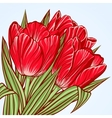 floral background with flowers tulips vector image vector image