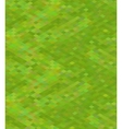 Pixelated green grass in isometric view seamless vector image vector image