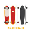 skateboard bottom side and top view vector image vector image
