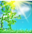 Spring and blue abstract defocused vector image vector image