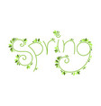 spring lettering template vector image