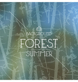 Summer forest background