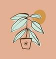 home plant in pot art print boho design vector image