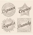 retro design sunburst radiant starburst vector image