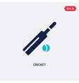 two color cricket icon from outdoor activities vector image vector image