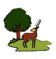 deer animal cartoon vector image vector image