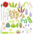 flat spring floral elements set vector image