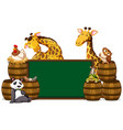 green board with giraffes and other animals vector image