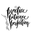 Practice Patience Perfection vector image vector image