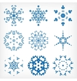 Set of isolated snowflakes for Christmas decor vector image