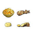 sketch raw potato with peel slices chips vector image vector image