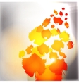 Autumn leaves grunge background vector image