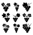 black and white icons of grapes vector image vector image