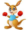 cartoon kangaroo boxing vector image