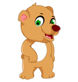 cute bear cartoon posing vector image vector image