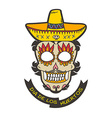 Day of dead skull with sombrero vector image vector image