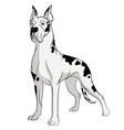 drawing dog isolated object vector image vector image