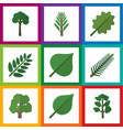 flat icon nature set of linden forest alder and vector image vector image