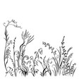 grass and flowers silhouette isolated on white vector image vector image