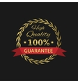 High Quality badge vector image vector image