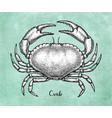 ink sketch brown edible crab vector image