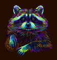 raccoon abstract portrait a