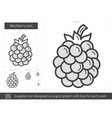 Blackberry line icon vector image vector image