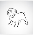 bulldog design on white background pet animals vector image vector image