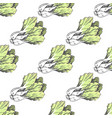 green graphic lettuce on white endless texture vector image