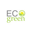 green leaf ecology logo vector image