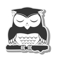 owl bird animal design vector image
