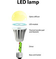 parts of a modern LED lamp vector image vector image