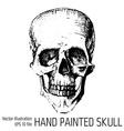 t-shirt graphics - sketched skull vector image