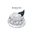 blueberry tart hand draw sketch vector image
