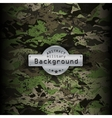 Camouflage military pattern background vector image vector image