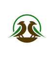 canary animal logo design your