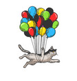 cat flies on air balloons sketch engraving vector image vector image