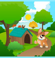 cheerful corgi walking in park nature landscape vector image