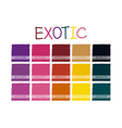 Exotic Color Tone-01 vector image vector image