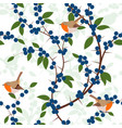 seamless pattern of blackthorn berries and robin vector image vector image